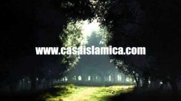 El Coran Te Llama .