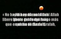 Ayunando el Dia de Arafah.